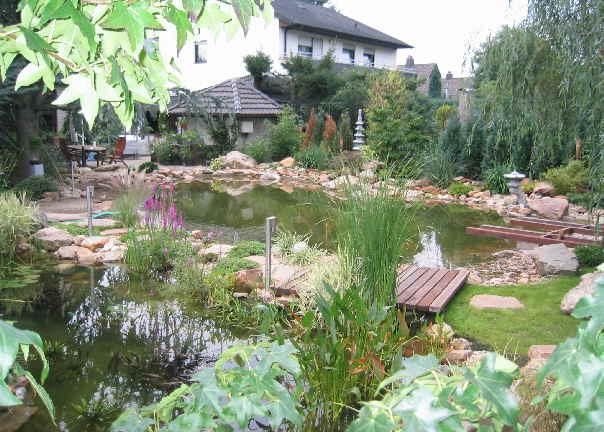 Gartenteich garten teich gartenteich bauen for Welche tiere fressen algen im teich